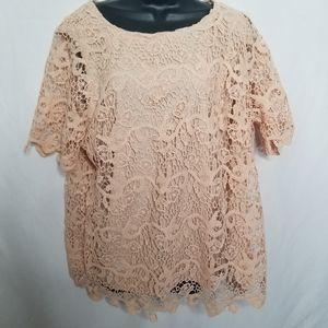 NWT Adiva lace short sleeve blouse